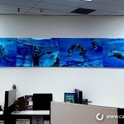 Office Wall Murals in Irvine CA