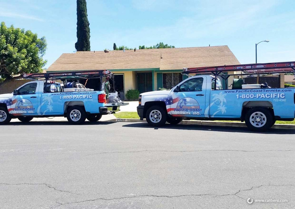 Fleet wraps and graphics in Orange County CA