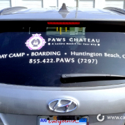 Car Window Graphics Vehicle Signs Paws Chateau Caliber Signs and Imaging