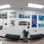 Wall Mural USA Water Polo Caliber Signs 1