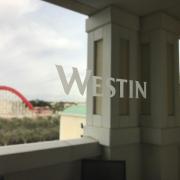 Vinyl Distraction Markers for Windows in Orange County CA