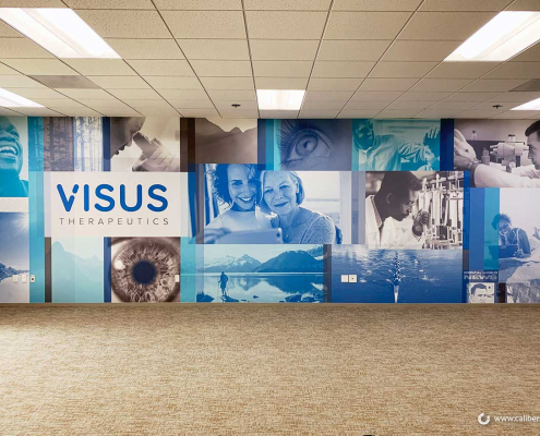Corporate Wall Murals in Irvine CA